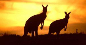 australia1 - екскурзии, екскурзия, хотели, туристическа агенция, почивка, оферти, ски, зимни курорти, летни курорти